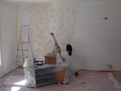 Ao t 2007 blog d 39 olivier hoarau aka funix - Peinture sans enduit ...
